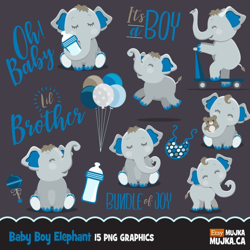 Cute elephant, baby shower clipart, lettering it\'s a boy.
