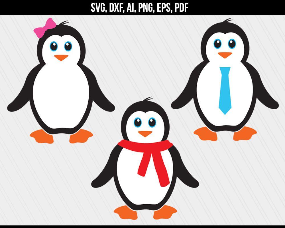 Penguin SVG, Penguin monogram svg, Cute Baby Penguin svg dxf.