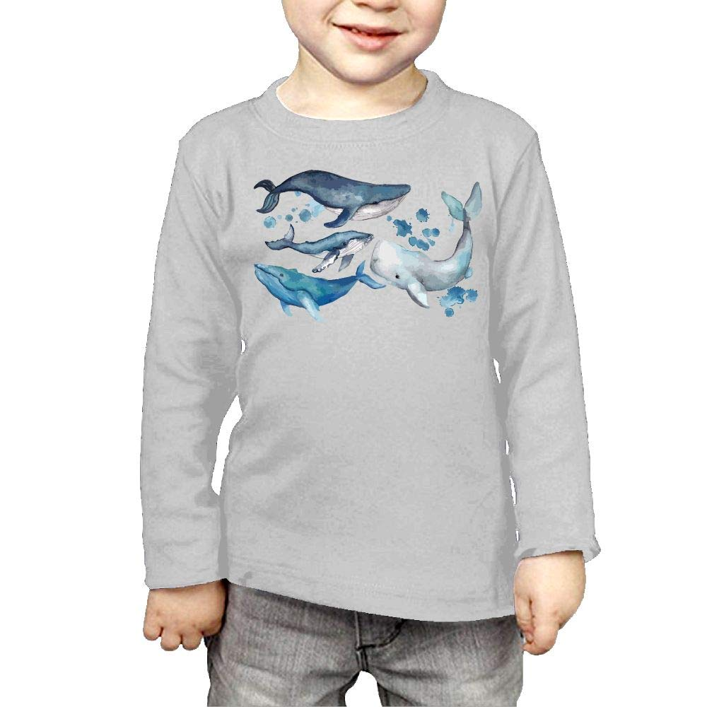Amazon.com: Baby Boys Kids Whale Clip Art ComfortSoft Long.
