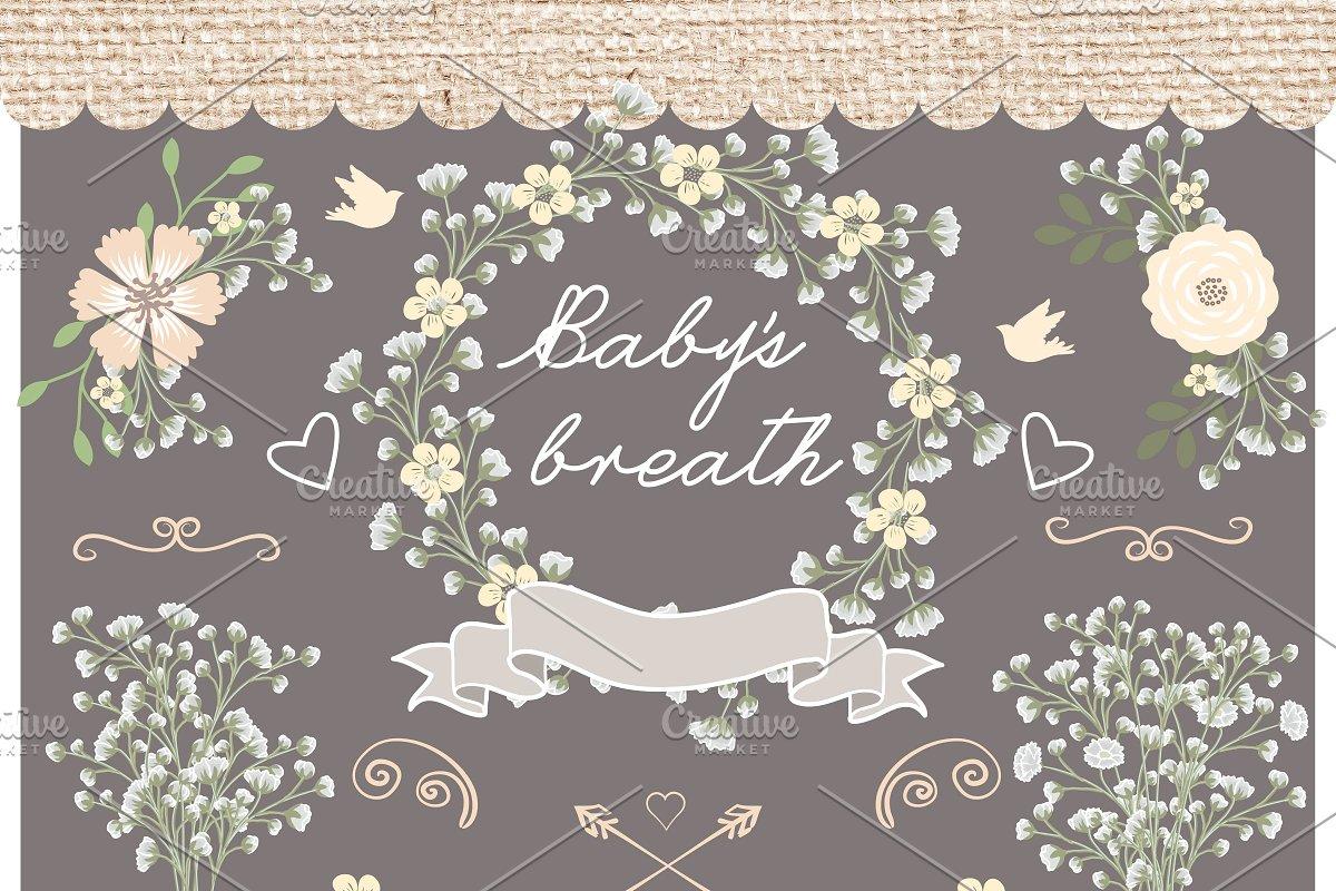 Vector baby breath clip arts ~ Illustrations ~ Creative Market.