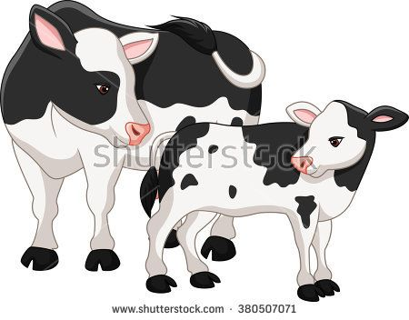 Cute cow mother with baby calf.