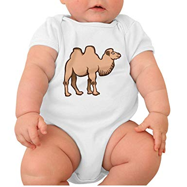Amazon.com: Camel Clipart Big Animal Short Sleeve Baby.