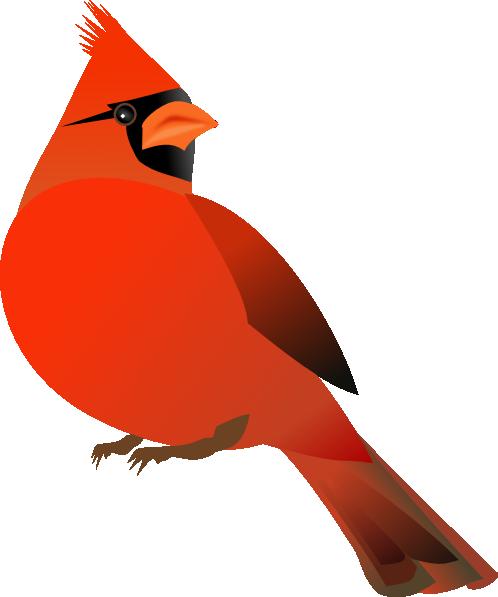 Cute baby cardinal clipart.