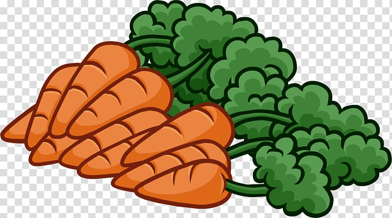 Baby carrot , Carrots transparent background PNG clipart.
