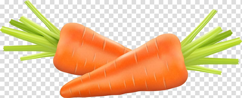 Two carrots illustration, Carrot Euclidean , carrot.