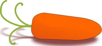 Baby Carrot clip art free vector.