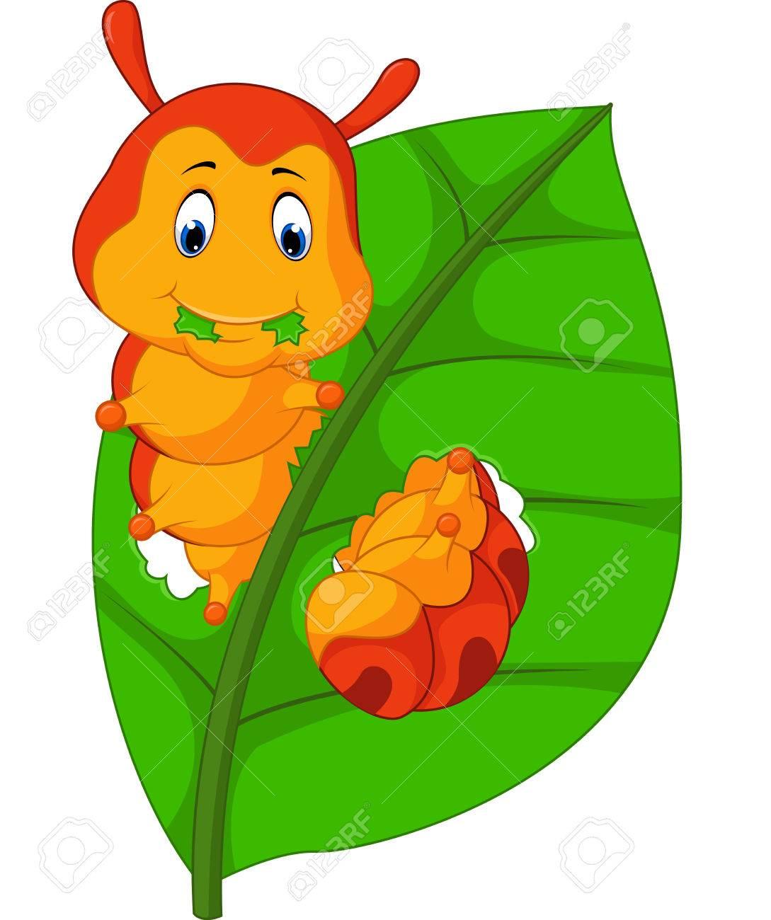 Caterpillar Eating Leaves Clipart.