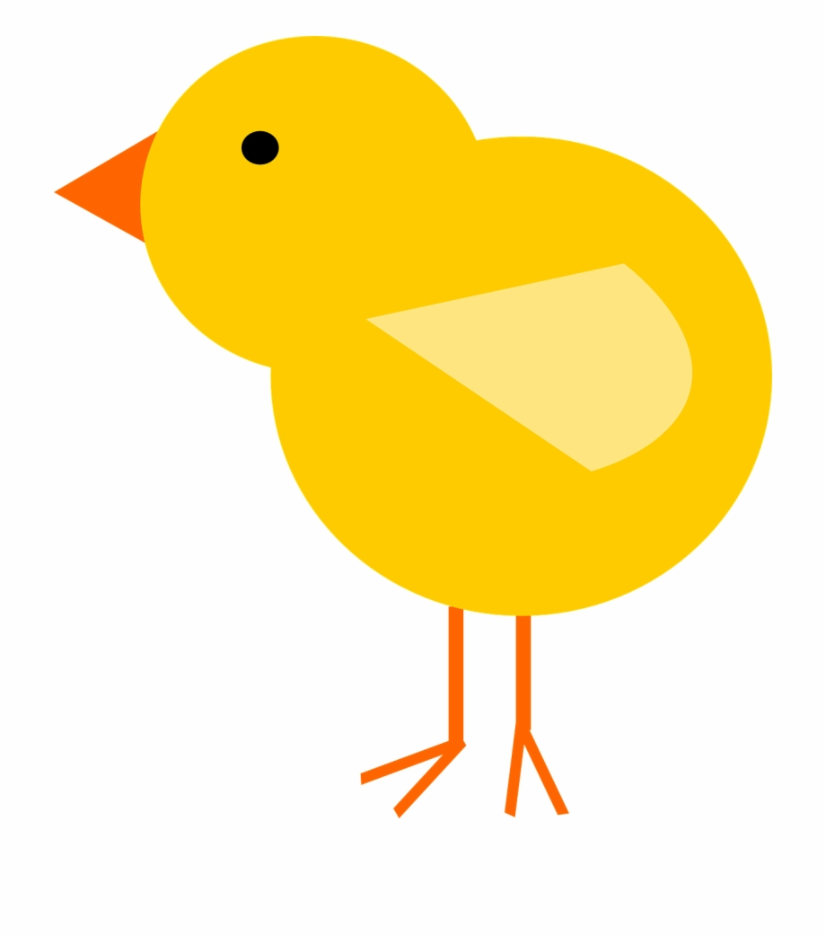 Baby Chick Cartoon Png , Png Download.