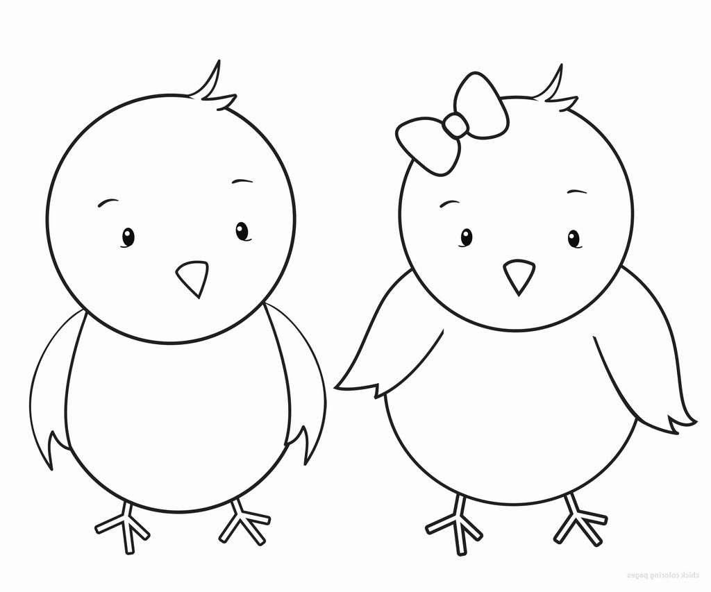 Baby Chick Clipart Alert Famous Sketch.