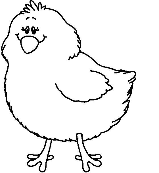 Baby chick clip art at vector image.