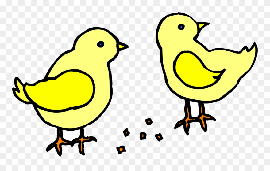 Similar Images For Baby Chicks Clipart.