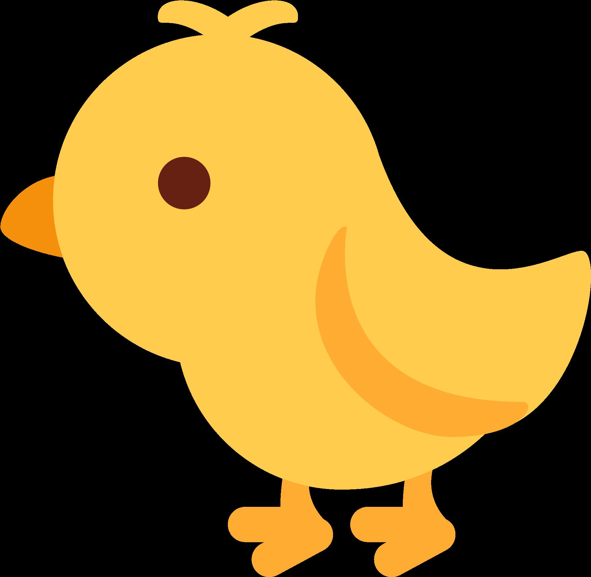 Baby Chick.