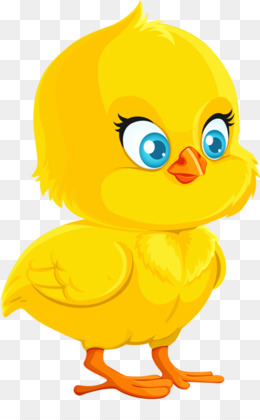 Chick PNG.