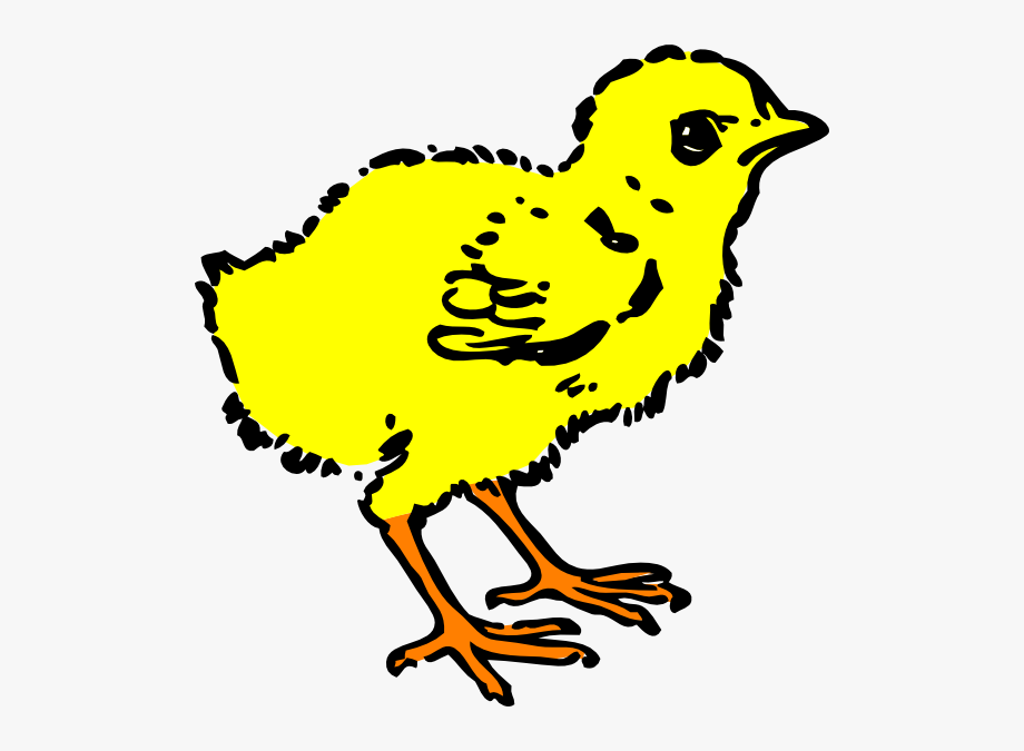 Black And White Baby Chicken Clipart , Transparent Cartoon.