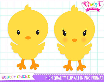 Chick clipart baby chic, Chick baby chic Transparent FREE.