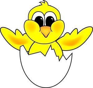 Chicken eggs hatching clipart.