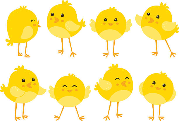 Clipart baby chicks 4 » Clipart Station.