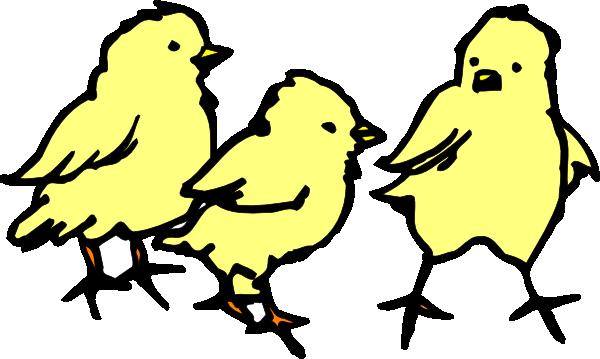 Baby Chicks Clip Art at Clker.com.