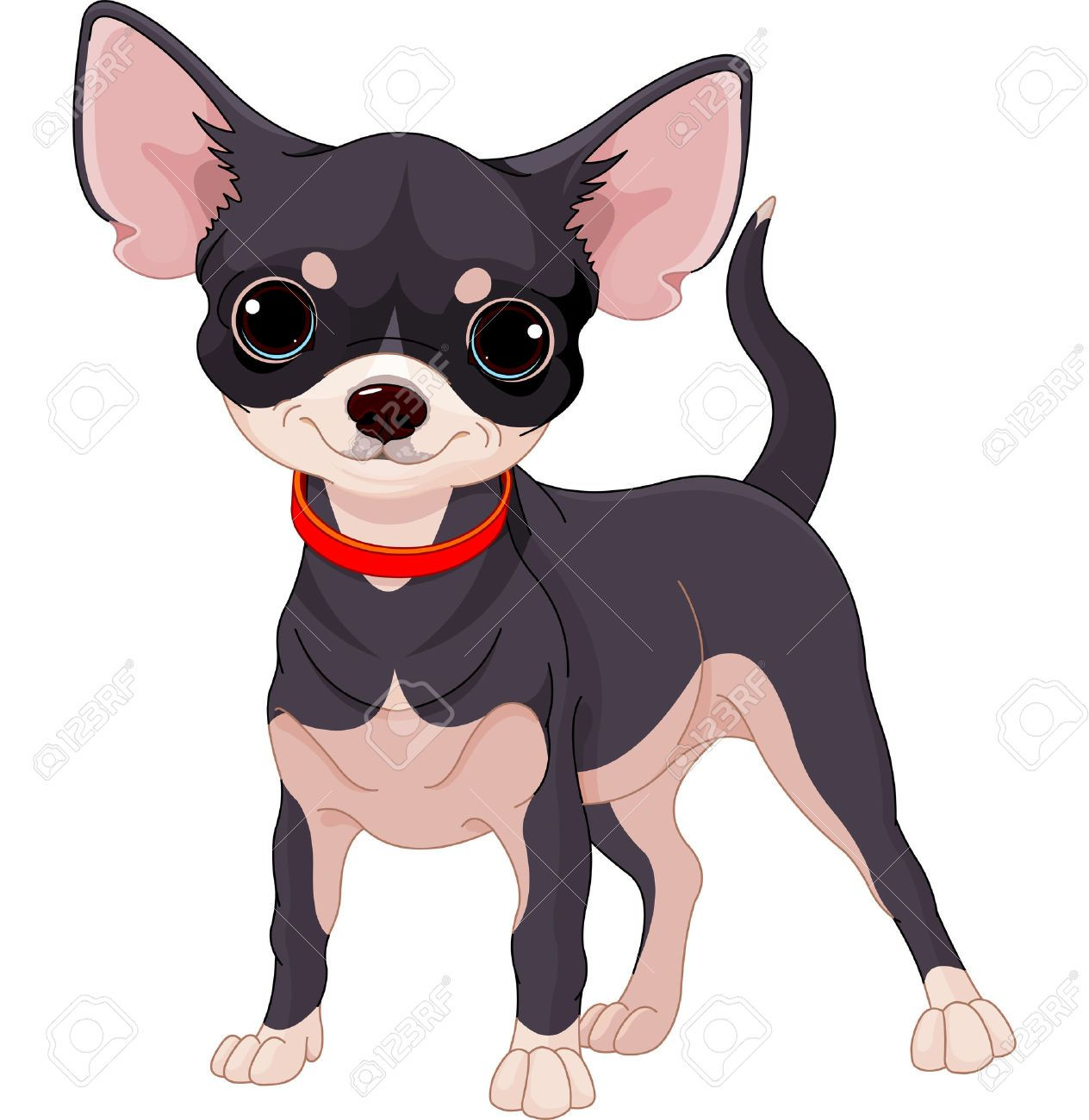 Cartoon Chihuahua Stock Photos, Pictures, Royalty Free.