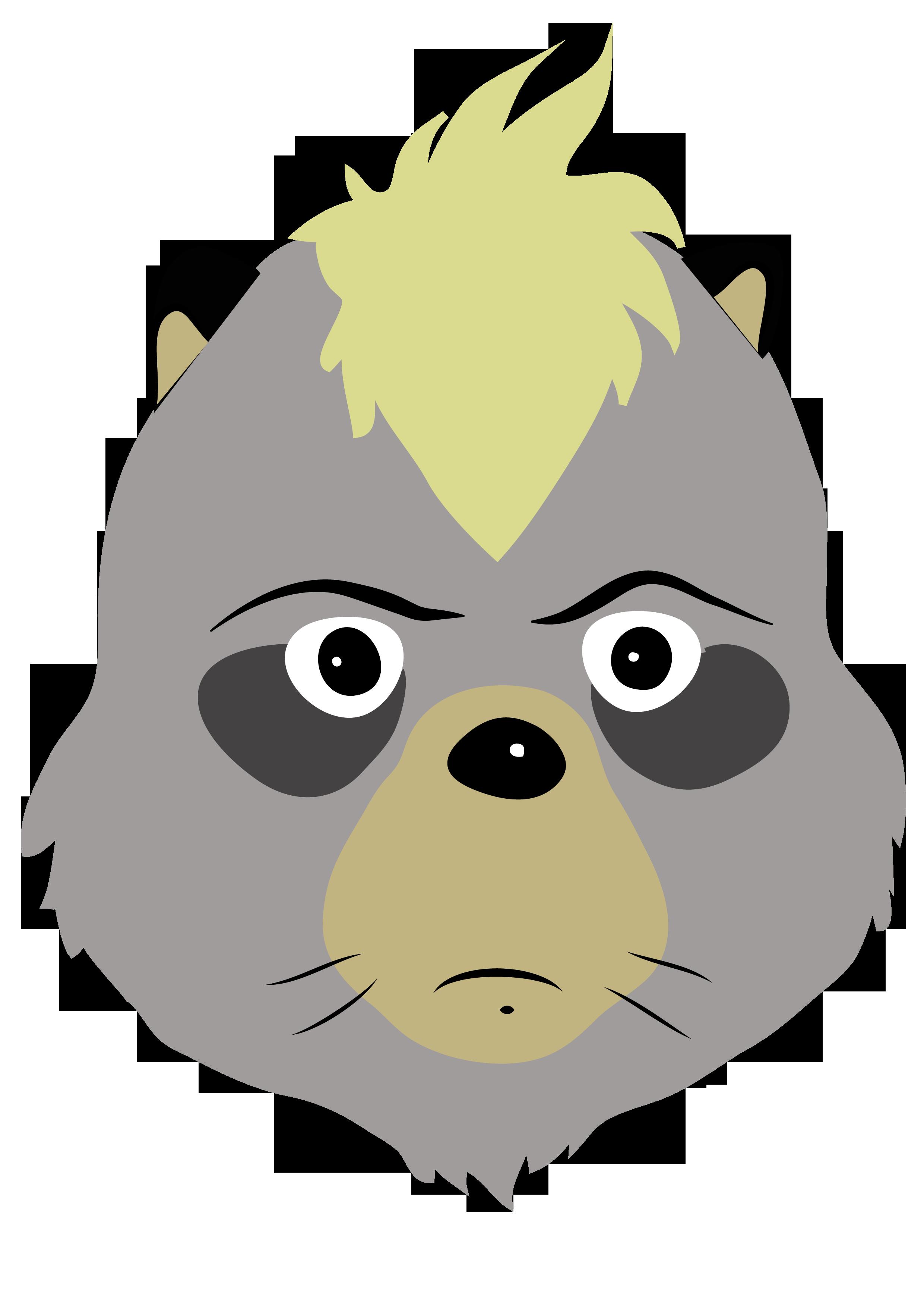 raccoon pompoko.