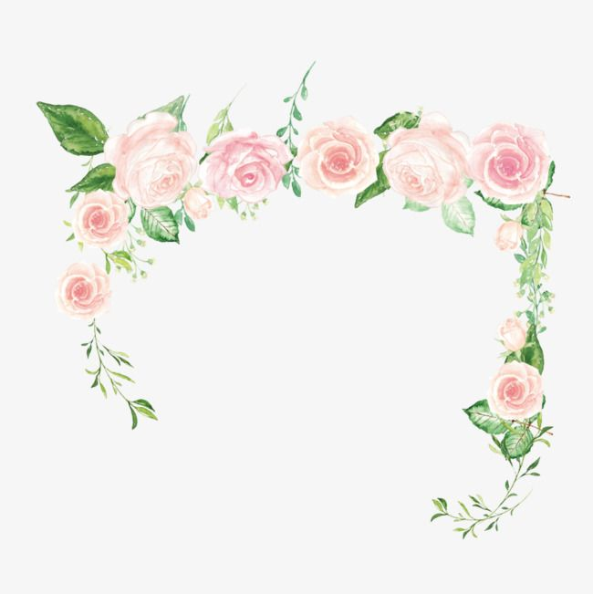 Rose Border, Pink Roses, Green Leaves, Roses Border PNG.