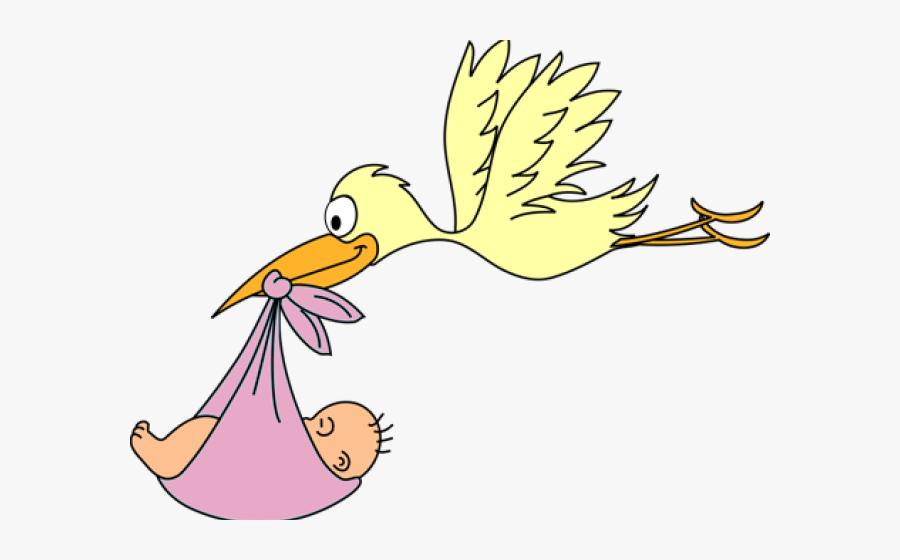 Pelican Clipart Baby.