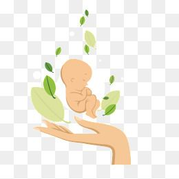 Vector Newborn Baby, Baby Clipart, Gesture, Action PNG and.