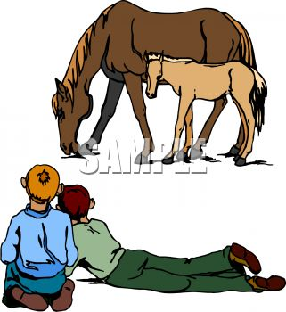 Mother And Baby Horse Clipart.