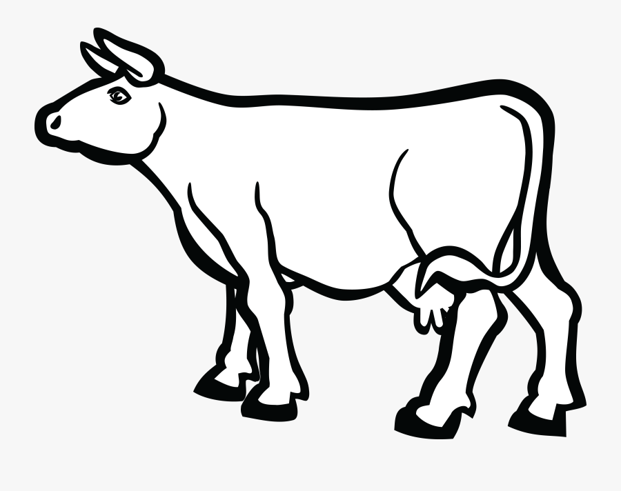 Transparent Baby Cow Png.