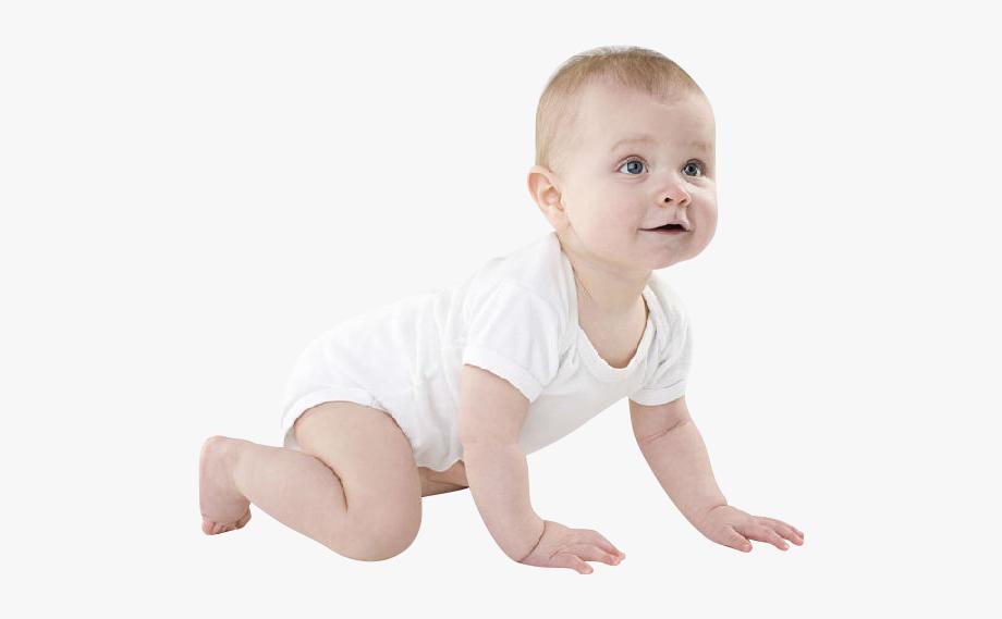 Baby Crawling Png.
