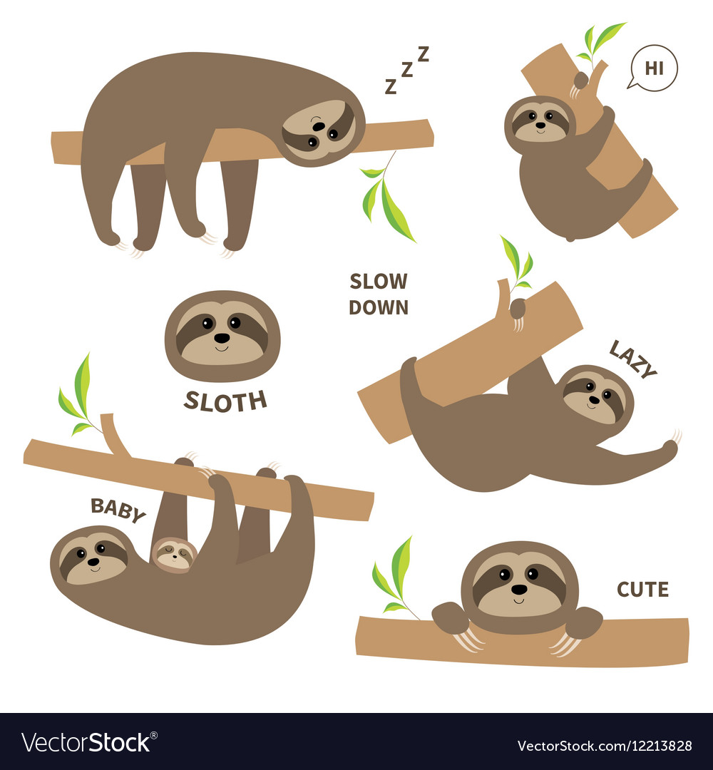 Sloth set mother with baby Cute lazy cartoon.