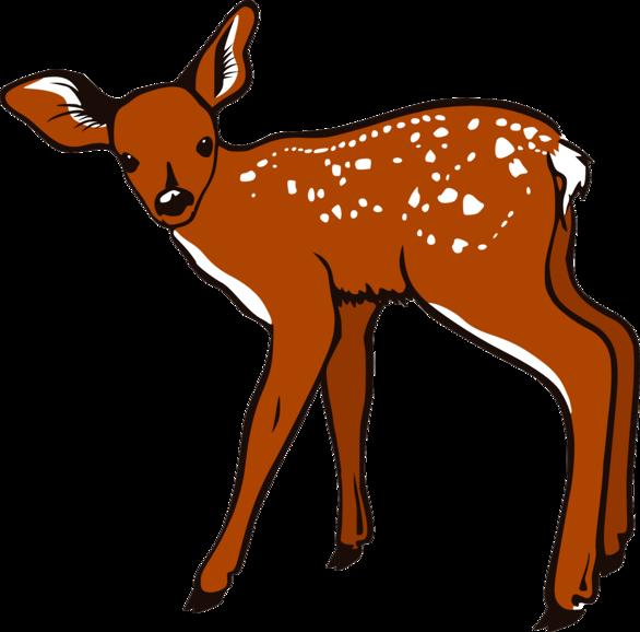 Cute Baby Deer Clipart.