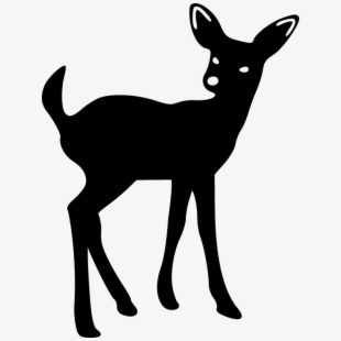 Deer, Young, Fawn, Looking, Silhouette.
