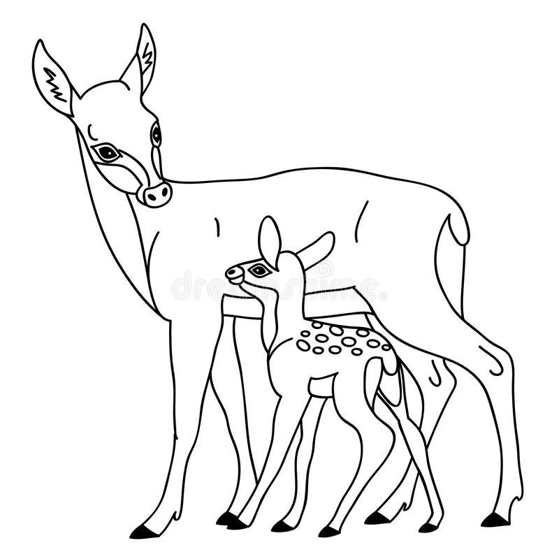 Vector Deer With Baby Deer stock vector. Illustration of.