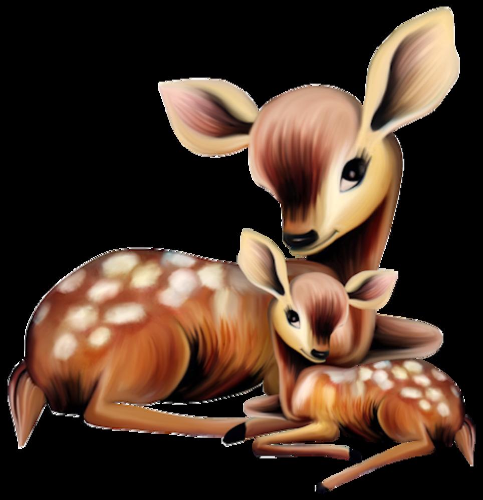 Sad clipart deer, Sad deer Transparent FREE for download on.