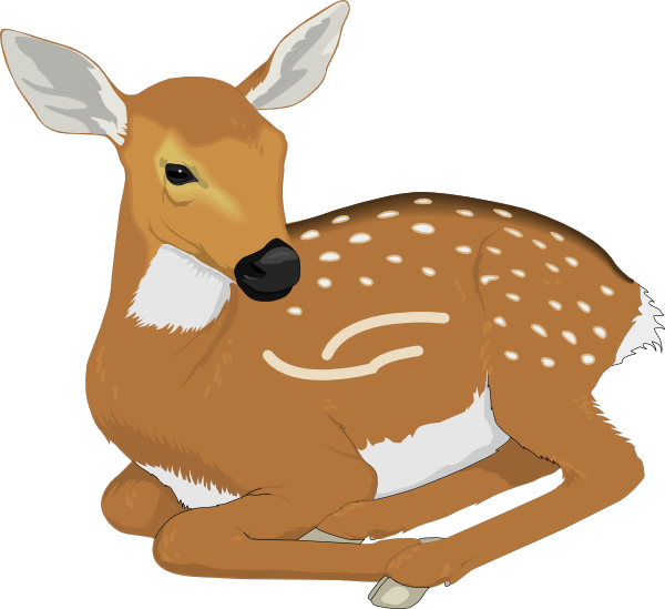 Resting Baby Deer Clip Art at Clker.com.