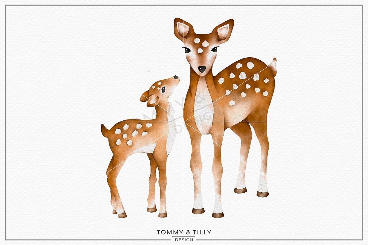 Mummy and Baby Deer No.3.