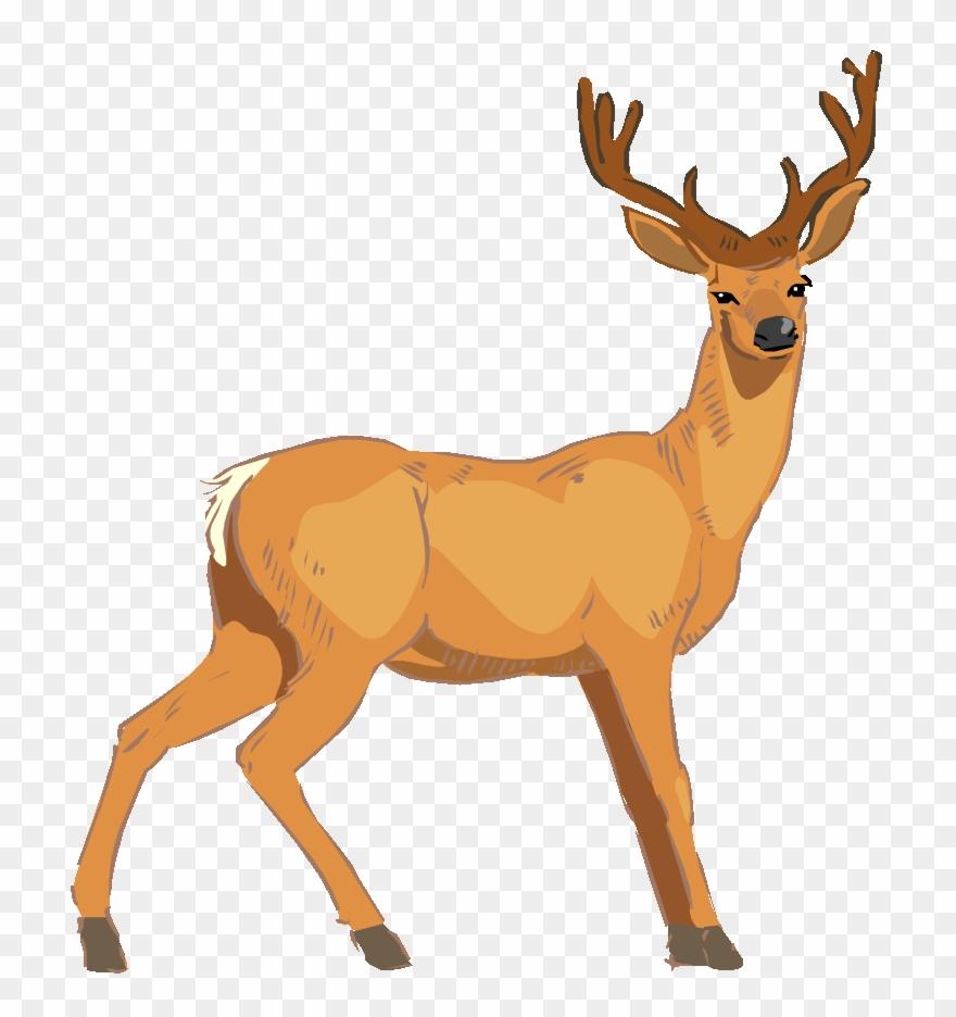 Baby Deer Clip Art Image.