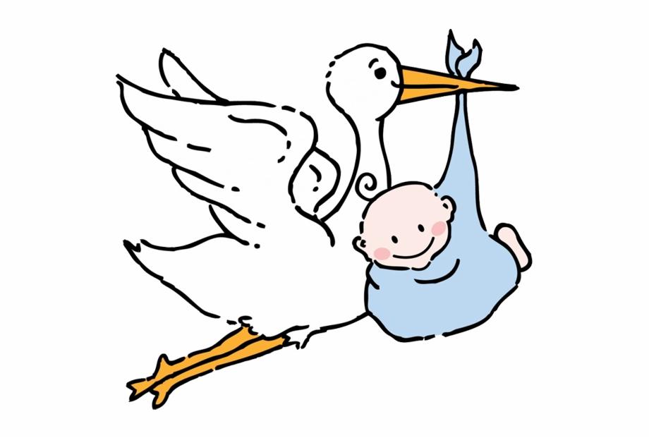 Stork Baby.