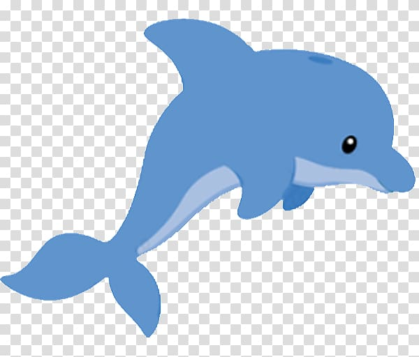 Dolphin Drawing , Baby Dolphin transparent background PNG.