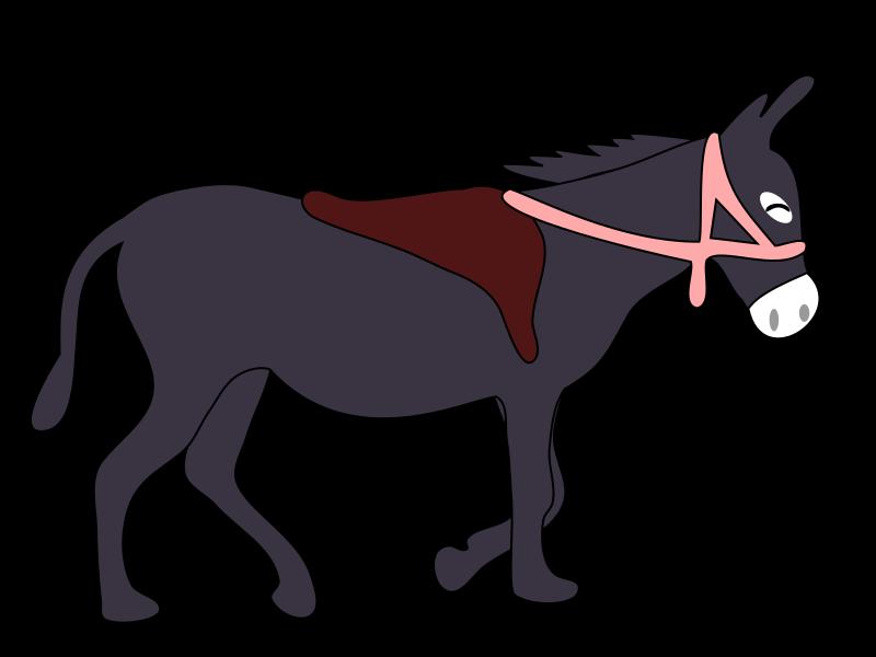 Donkey clipart baby donkey, Donkey baby donkey Transparent.