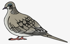 Dove Clipart PNG, Transparent Dove Clipart PNG Image Free.