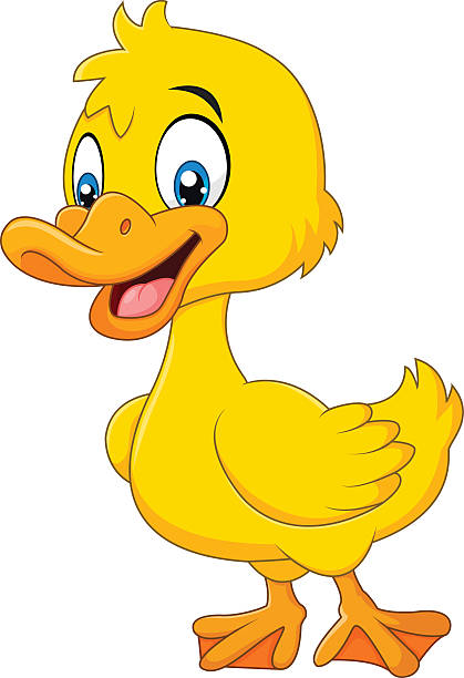 Best Baby Duck Illustrations, Royalty.