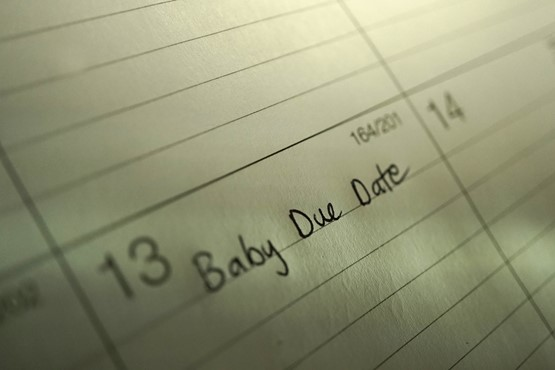 Pregnancy Due Date Calculator.