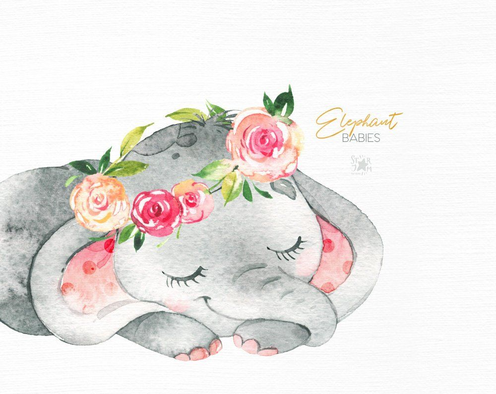 Elephant. Babies. Watercolor little animal clipart africa.