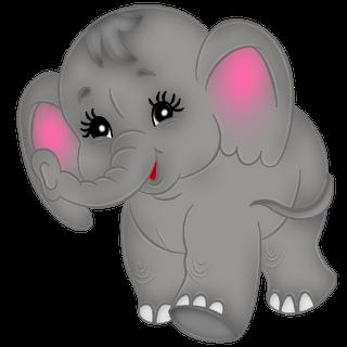 Baby Elephant\'s Cute.