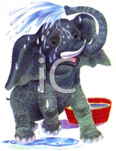 A Baby Elephant Spraying Water on Itself.