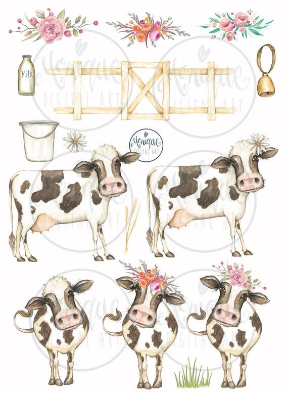 Clipart, cow clipart, cute cow, cute farm animals, cows.
