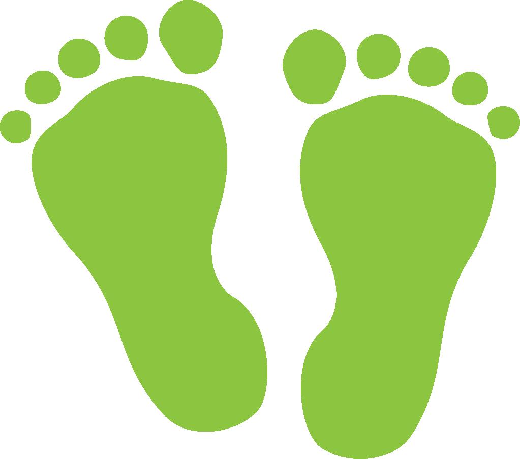 Biomonitoring Mn Feet Minnesota.