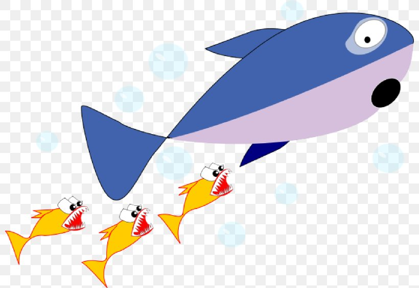 Shark Cartoon Fish Clip Art, PNG, 800x565px, Shark, Animal.